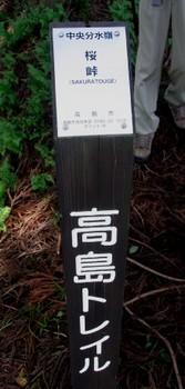 中央分水嶺 桜峠