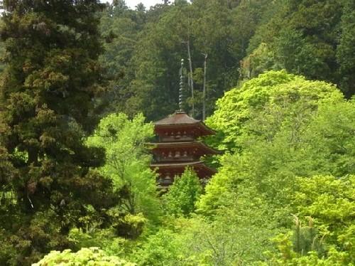 長谷寺五重塔
